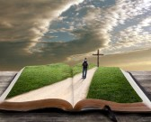 14208049-an-open-bible-with-grass-and-a-man-walking-towards-a-cross